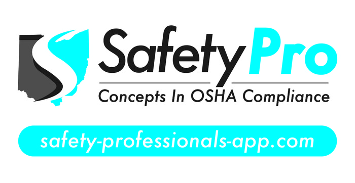 SafetyPro Logo